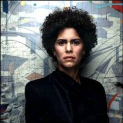 Author Julie Mehretu