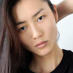 Author Liu Wen