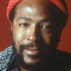 Author Marvin Gaye