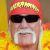 Author Hulk Hogan
