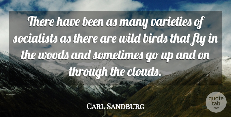 Carl Sandburg Quote About Clouds, Bird, Woods: There Have Been As Many...