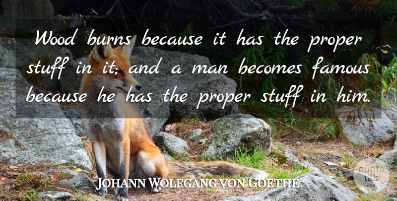 Johann Wolfgang von Goethe Quote About Men, Woods, Stuff: Wood Burns Because It Has...