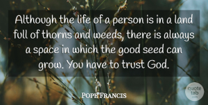 Trust Quotes, Pope Francis Quote About Trust, Weed, Land: Although The Life Of A...