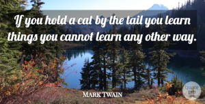 Mark Twain Quote About Nature, Inspiration, Cat: If You Hold A Cat...