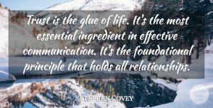 Trust Quotes, Stephen Covey Quote About Relationship, Trust, Boyfriend: Trust Is The Glue Of...