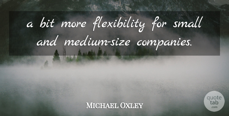Michael Oxley Quote About Bit, Small: A Bit More Flexibility For...