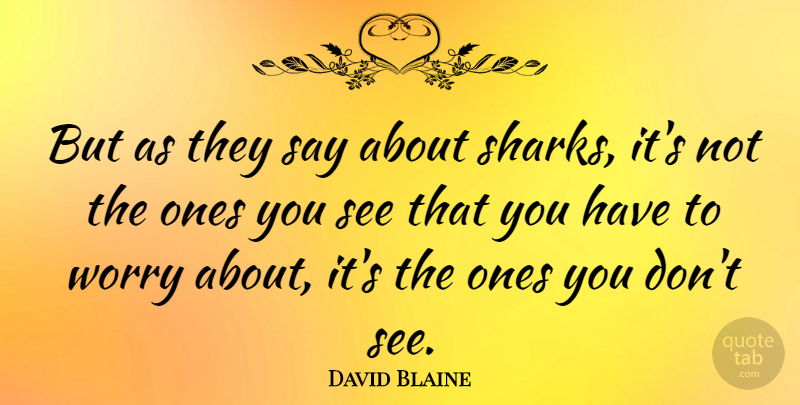 David Blaine Quote About Sharks, Worry: But As They Say About...