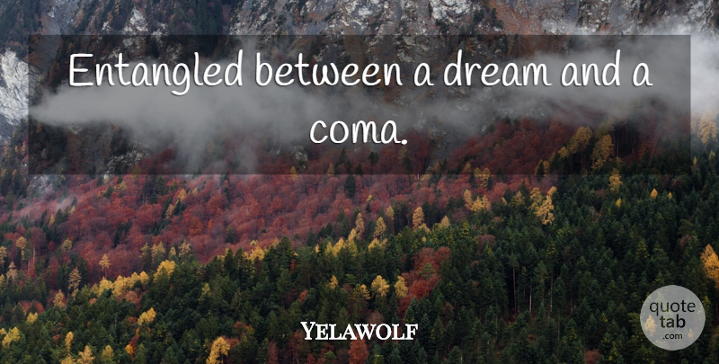 Yelawolf Quote About Dream, Coma: Entangled Between A Dream And...