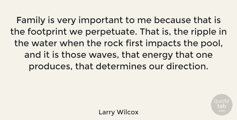 Larry Wilcox Quote About Rocks, Impact, Water: Family Is Very Important To...