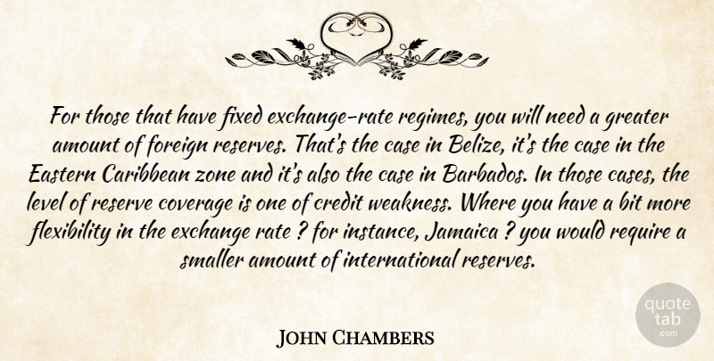 John Chambers Quote About Amount, Bit, Caribbean, Case, Coverage: For Those That Have Fixed...