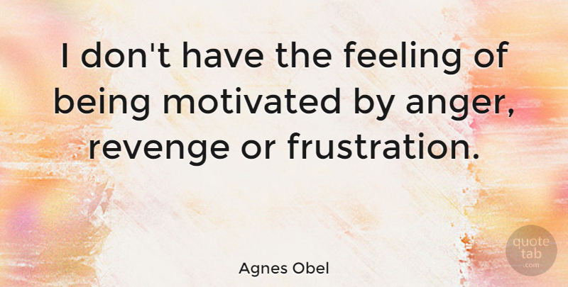 Agnes Obel Quote About Revenge, Frustration, Feelings: I Dont Have The Feeling...