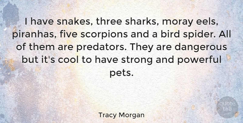 Tracy Morgan Quote About Strong, Powerful, Sharks: I Have Snakes Three Sharks...