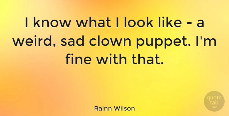 Rainn Wilson Quote About Puppets, Looks, Clown: I Know What I Look...