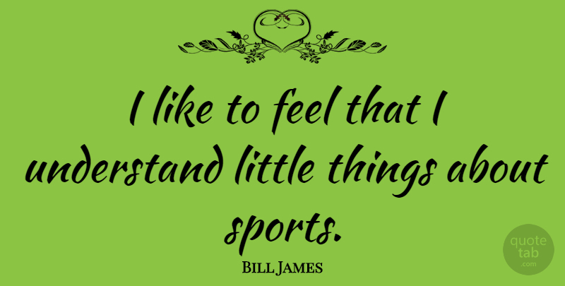 Bill James Quote About Sports, Littles, Little Things: I Like To Feel That...