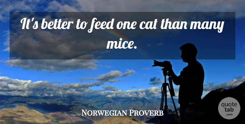 Norwegian Proverb Quote About Cat, Feed: Its Better To Feed One...