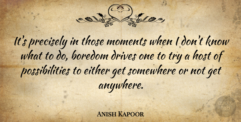 Anish Kapoor Quote About Blessing, Boredom, Trying: Its Precisely In Those Moments...