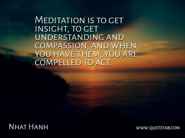 Nhat Hanh Quote About Compassion, Meditation, Understanding: Meditation Is To Get Insight...