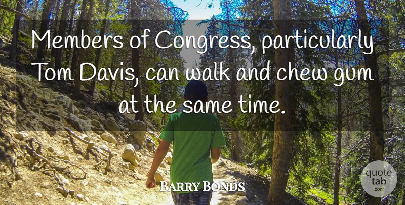 Barry Bonds Quote About Chew, Congress, Gum, Members, Tom: Members Of Congress Particularly Tom...