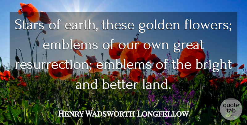 Henry Wadsworth Longfellow Quote About Stars, Flower, Land: Stars Of Earth These Golden...