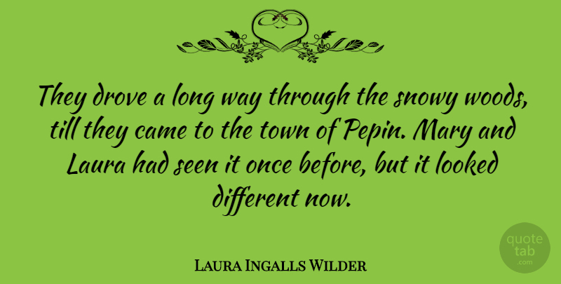 Laura Ingalls Wilder Quote About Long, Woods, Way: They Drove A Long Way...