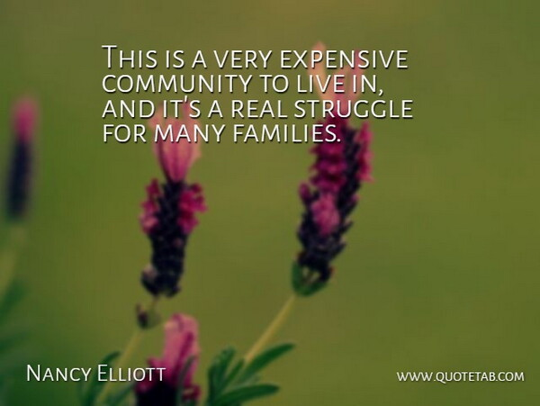 Nancy Elliott Quote About Community, Expensive, Struggle: This Is A Very Expensive...