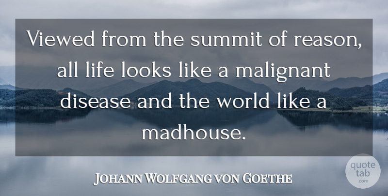 Johann Wolfgang von Goethe Quote About Life, World, Disease: Viewed From The Summit Of...
