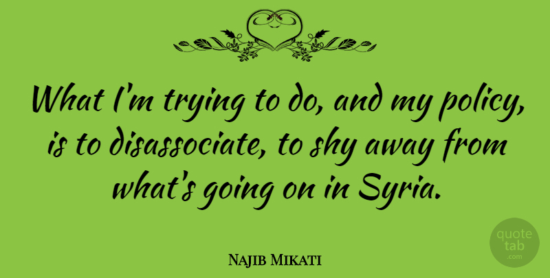 Najib Mikati Quote About Trying: What Im Trying To Do...