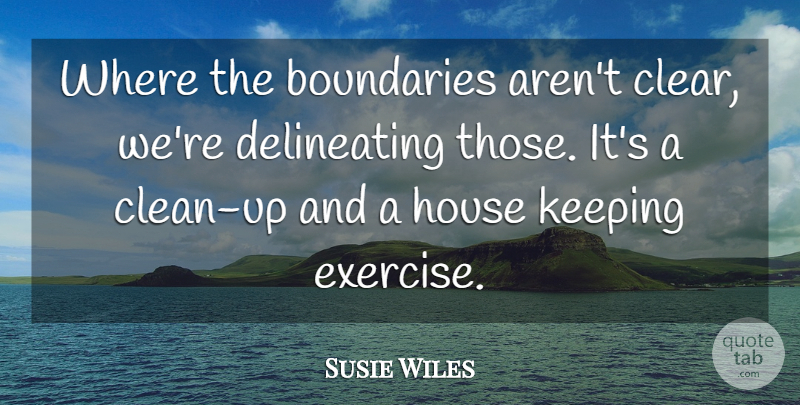 Susie Wiles Quote About Boundaries, Exercise, House, Keeping: Where The Boundaries Arent Clear...