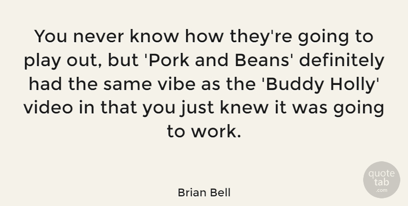 Brian Bell Quote About Definitely, Knew, Vibe, Video, Work: You Never Know How Theyre...
