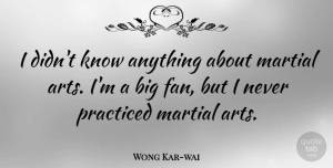 Wong Kar-wai Quote About Martial, Practiced: I Didnt Know Anything About...