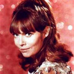 Author Barbara Feldon