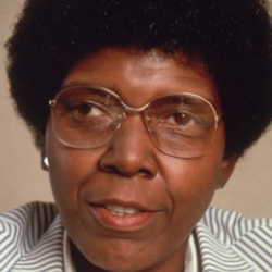 Author Barbara Jordan