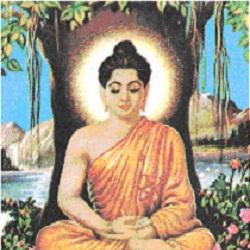 Author Buddha