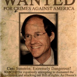 Author Cass Sunstein