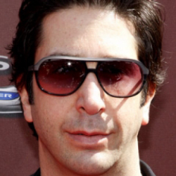 Author David Schwimmer