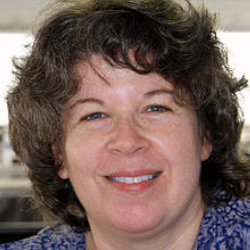 Author Meg Wolitzer