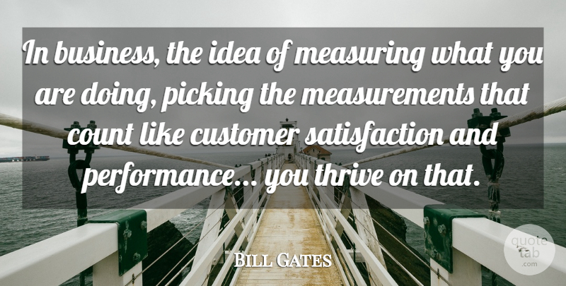 Bill Gates Quote About Success, Ideas, Satisfaction: In Business The Idea Of...