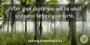 Death Quotes, Arthur Schopenhauer Quote About Death, Suicide, Philosophical: After Your Death You Will...