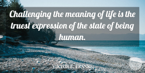 Viktor E. Frankl Quote About Motivational, Expression, Challenges: Challenging The Meaning Of Life...