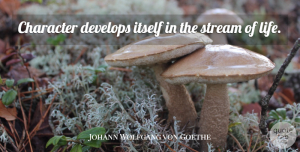 Johann Wolfgang von Goethe Quote About Life, Character, Streams: Character Develops Itself In The...