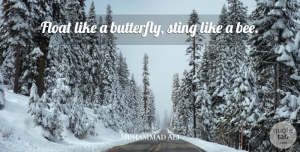 Muhammad Ali Quote About Strength, Sports, Inspiration: Float Like A Butterfly Sting...
