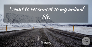 Kesha Quote About Life: I Want To Reconnect To...