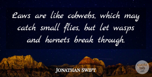 Jonathan Swift Quote About Inspirational, Law, Break Through: Laws Are Like Cobwebs Which...
