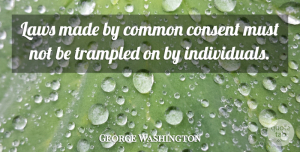 George Washington Quote About 4th Of July, Law, Liberty: Laws Made By Common Consent...