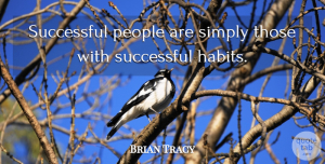 Success Quotes, Brian Tracy Quote About Success, People, Habit: Successful People Are Simply Those...