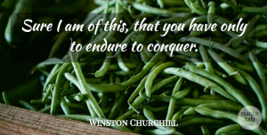 Perseverance Quotes, Winston Churchill Quote About Perseverance, Persevere, Conquer: Sure I Am Of This...