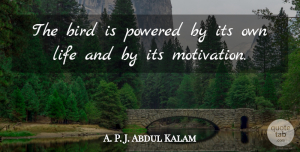 Abdul Kalam Quote About Inspirational, Motivation, Bird: The Bird Is Powered By...
