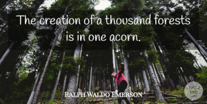 Inspirational Quotes, Ralph Waldo Emerson Quote About Inspirational, Positive, Hope: The Creation Of A Thousand...
