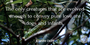 Johnny Depp Quote About Love, Dog, Baby: The Only Creatures That Are...