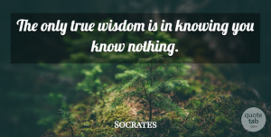 Socrates Quote About Wise, Wisdom, Knowing Nothing: The Only True Wisdom Is...